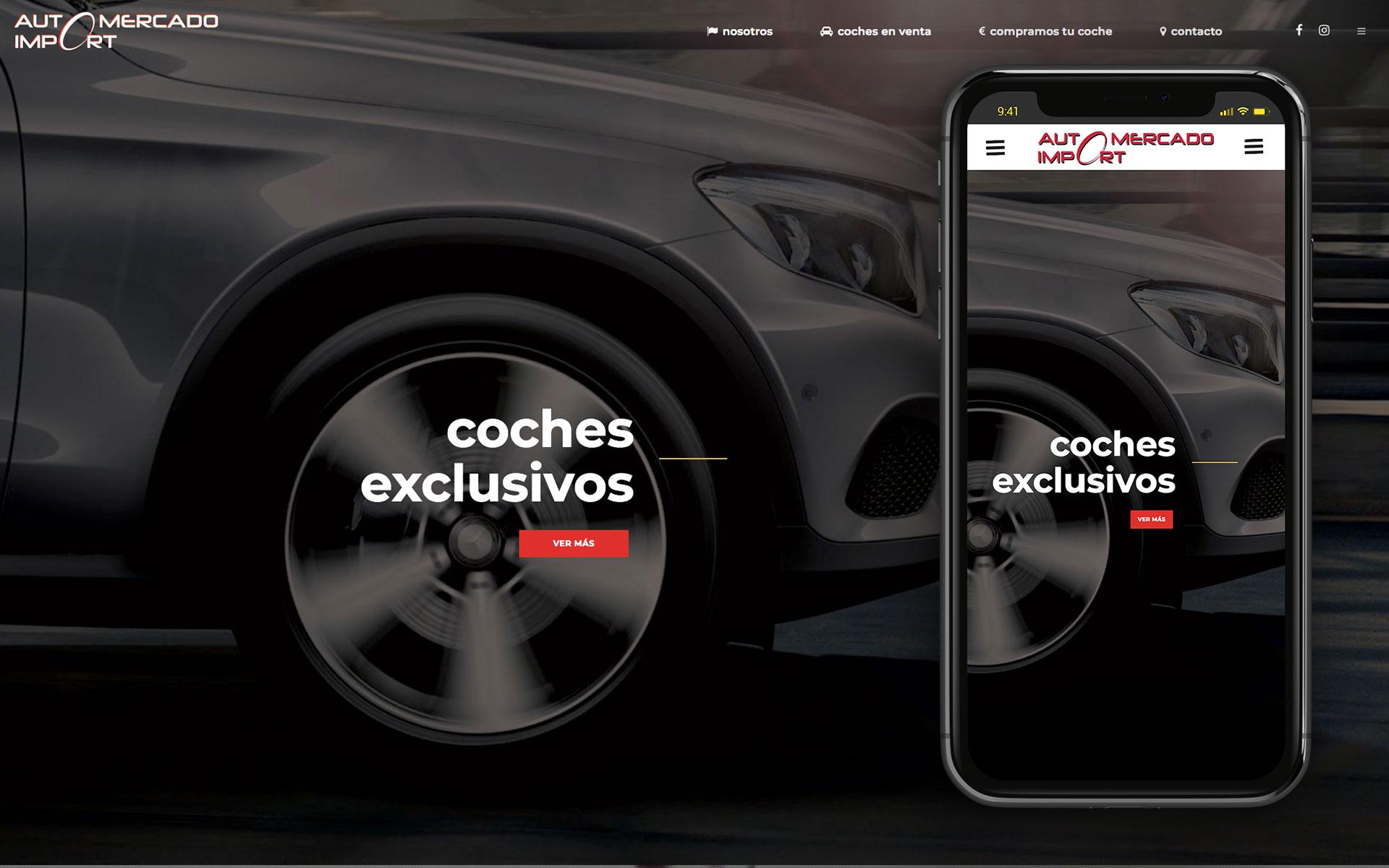 Web para Automercadoimport